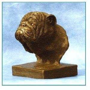 Bulldog - Small Bust