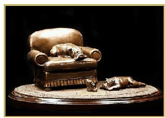 Bulldog - Comfort Zone