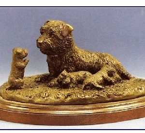 Norfolk Terrier - Family