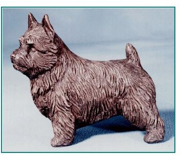 Norwich Terrier - Small Standing Dog