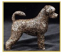Portuguese WaterDog - Small Standing Curly Coat