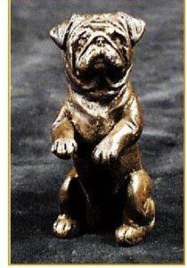 Pug - Begging