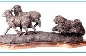 Puli - Herding Sheep