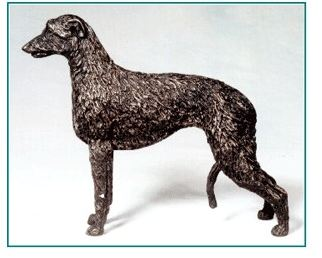 Scott. Deerhound - Small Standing Dog