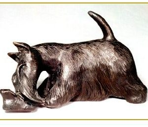 Scottish Terrier - Playing with Shoe
