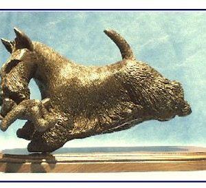 Scottish Terrier- Running with Teddy Bear