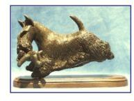 Scottish Terrier- Running with Teddy Bear
