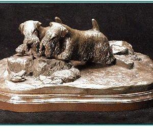 Sealyham Terrier - Look A Frog