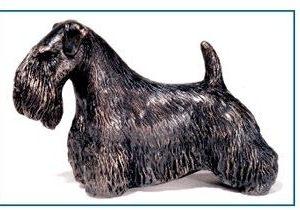 Sealyham Terrier - Small Standing Dog