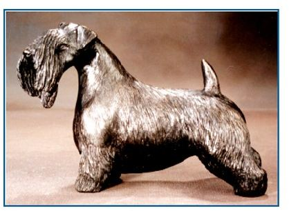 Sealyham Terrier - Large Standing Dog