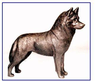 Siberian Husky - Large Standing Dog