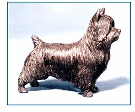 Silky - Small Standing Dog