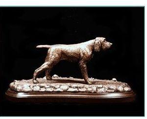 Spinone Italiano - Dog on Point