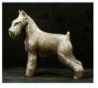 Standard Schnauzer - Large Standing Dog