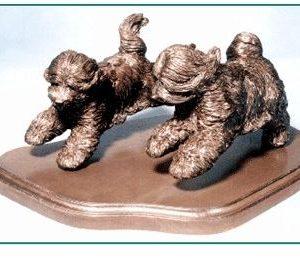 Tibetan Terrier - Pair Running