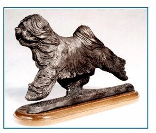 Tibetan Terrier - Large Moving