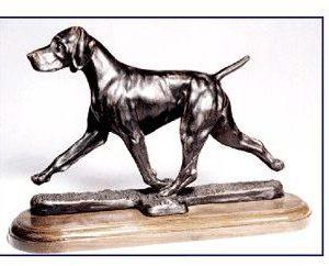 Vizsla - Large Moving Dog