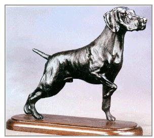 Vizsla - Large Standing Dog on Point