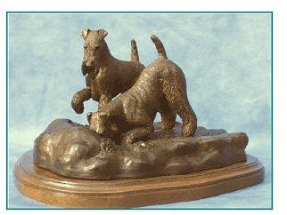 Welsh Terrier - Curiosity