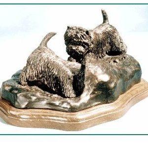 West Highland White Terrier - Curiosity