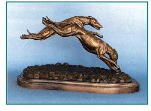 Whippet - Pair Coursing