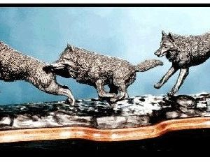 Limited Edition - Wolves Running