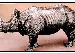 Limited Edition - Indian Rhinoceros