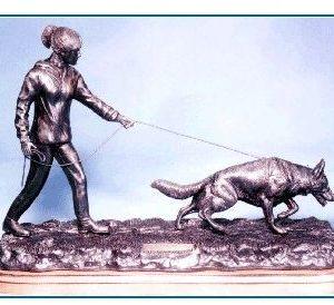 German Shepherd Dog - Tracking I