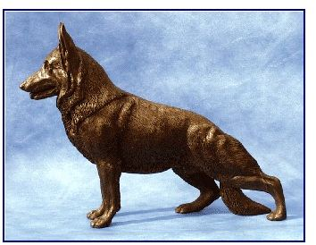 German Shepherd Dog - Large Standing