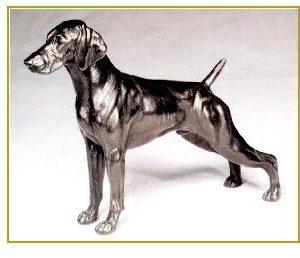 German Shorthair Pointer - Small Standing Dog