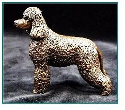 Irish Water Spaniel - Small Standing Dog