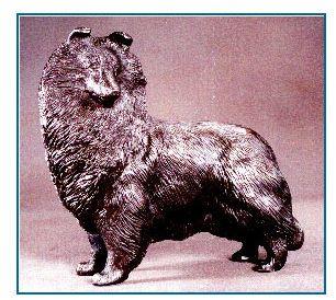 Shetland Sheepdog - Large Standing Dog