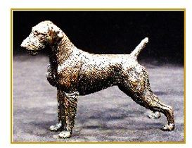 German Wirehair Pointer- Small Standing Dog