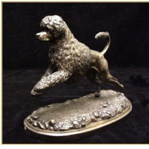 Portuguese WaterDog - Single Leaping