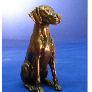 Rhodesian Ridgeback - Small Sitting Dog