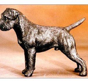 Border Terrier - Medium Standing Dog