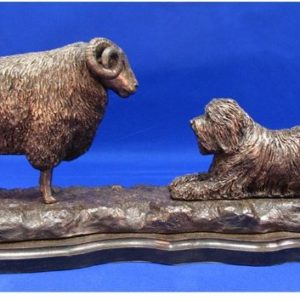 Bearded Collie - with Black Face Ram