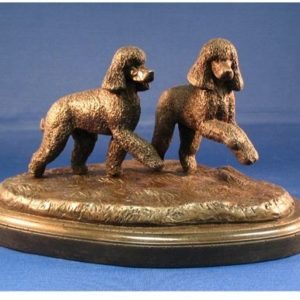 Irish Water Spaniel - Sm. Pair Run/Play