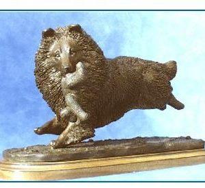 Shetland Sheepdog - Running with Teddy Bear