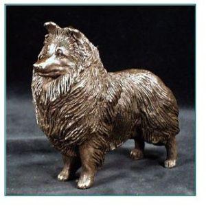 Shetland Sheepdog - Small Standing Dog