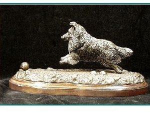 Shetland Sheepdog - Chasing Ball