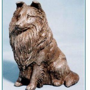 Shetland Sheepdog - Large Sitting
