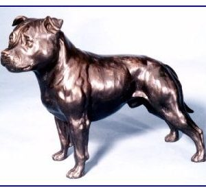 Staffordshire Bull Terr - Large Standing Dog