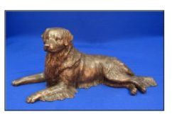 Golden Retriever Dog - Large Lying