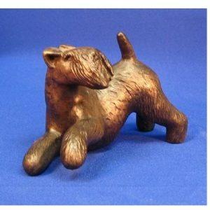 Lakeland Terrier - Playful
