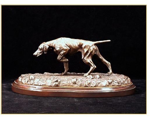 Vizsla - Small Pointing Dog
