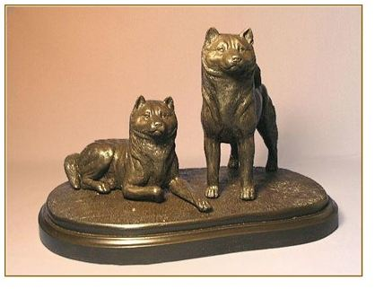 Shiba Inu - Pair on Base
