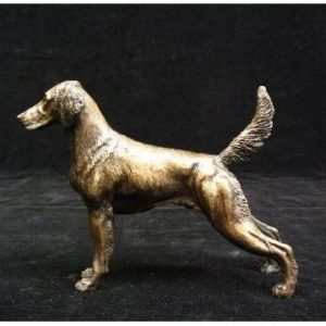 Weimaraner - Long Hair Dog