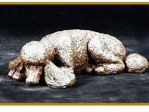 Poodle- Kennel- Sleeping