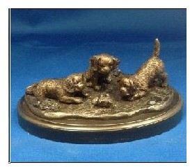 Cavalier King Charles Spaniel - Pups Playing